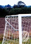 Elbow Net Support for 3G Goal