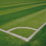 Line Marking Guides